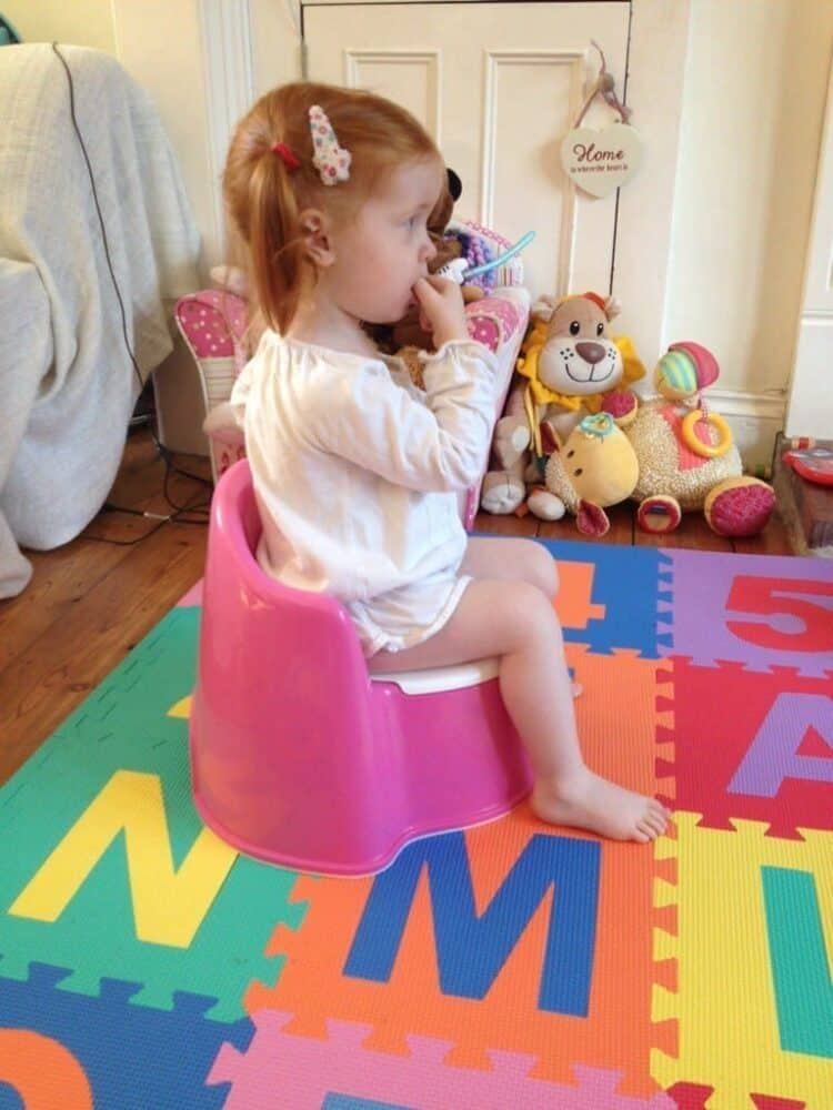 Baby Bjorn Potty Chair Review and a Potty Training Update