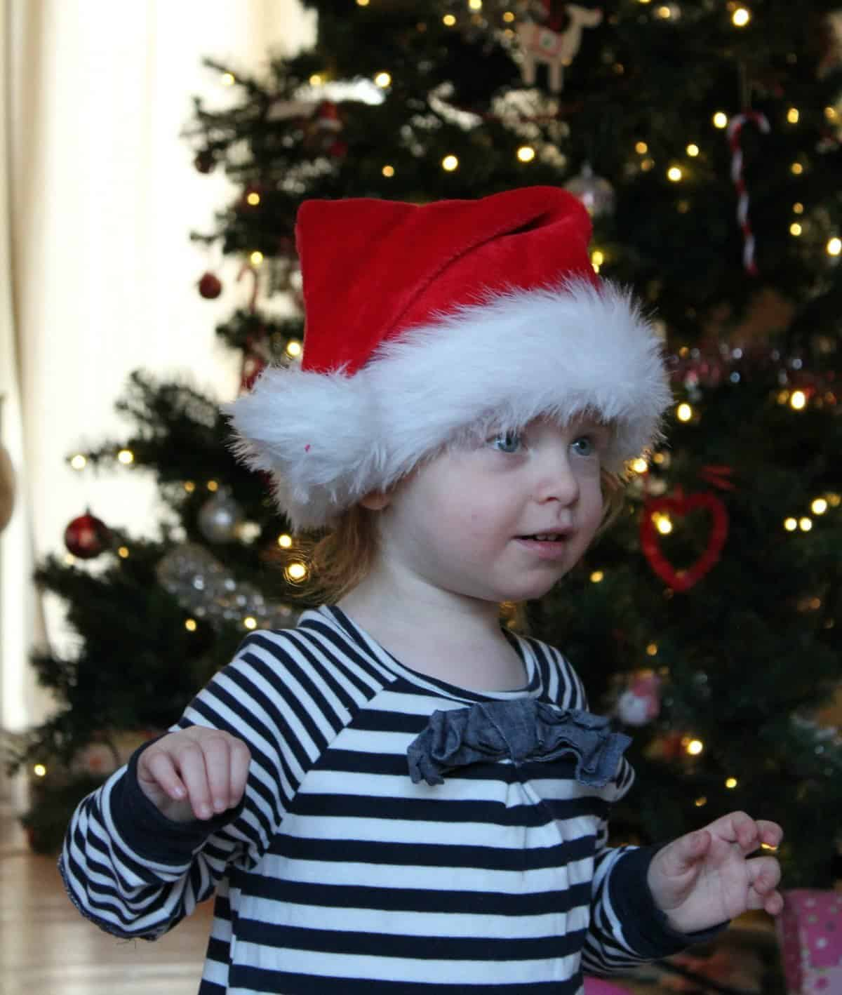 Santa Hat - The Ordinary Moments