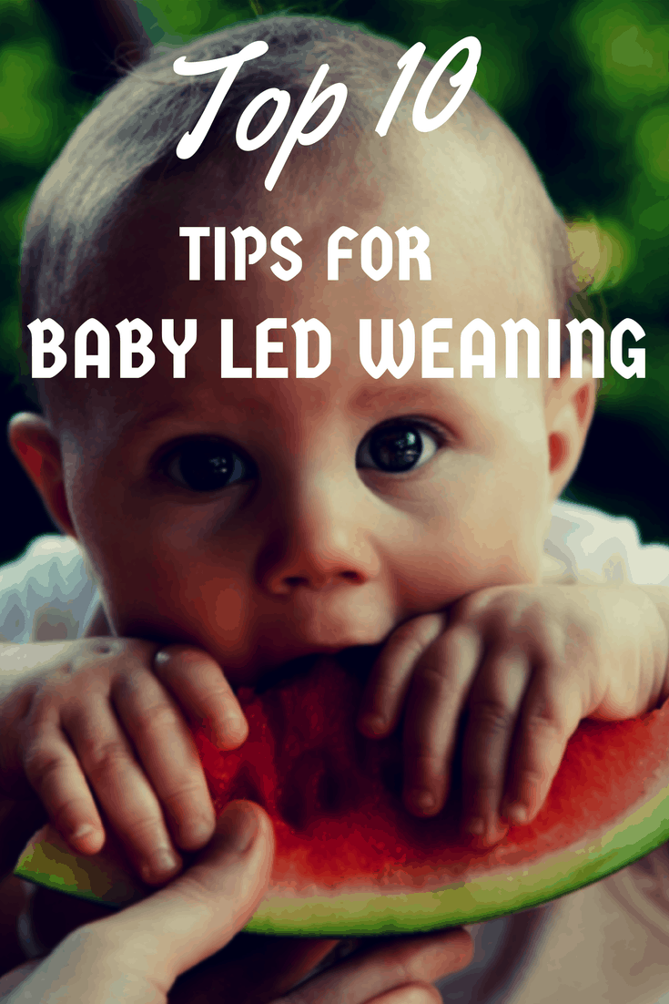 Top 10: Baby Led Weaning Tips