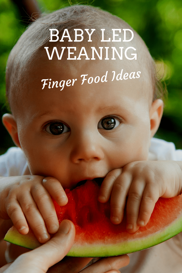 Baby Led Weaning & Finger Food Ideas