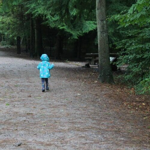 Review: A Day Out at Alice Holt Forest #VitaPicnics