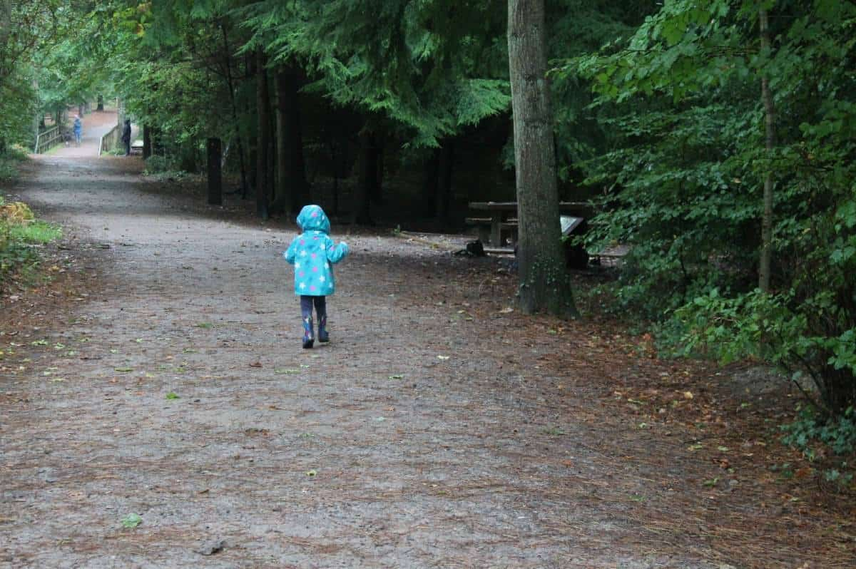 A Day Out at Alice Holt Forest #VitaPicnics