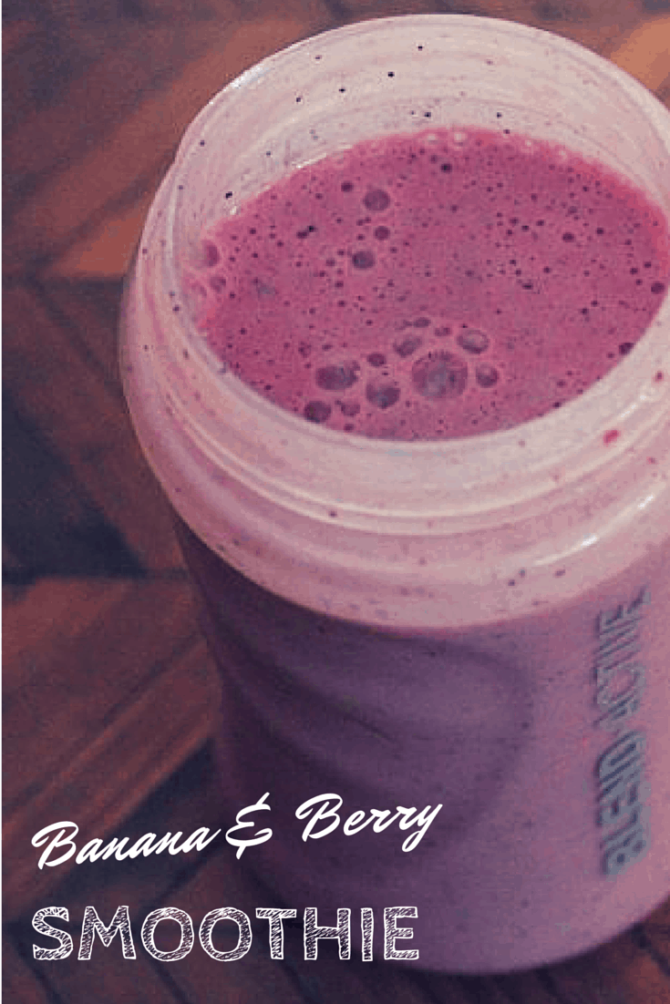 Breville Blend Active Family Pack Review