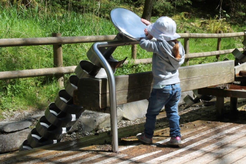 Review: Whinlatter Forest