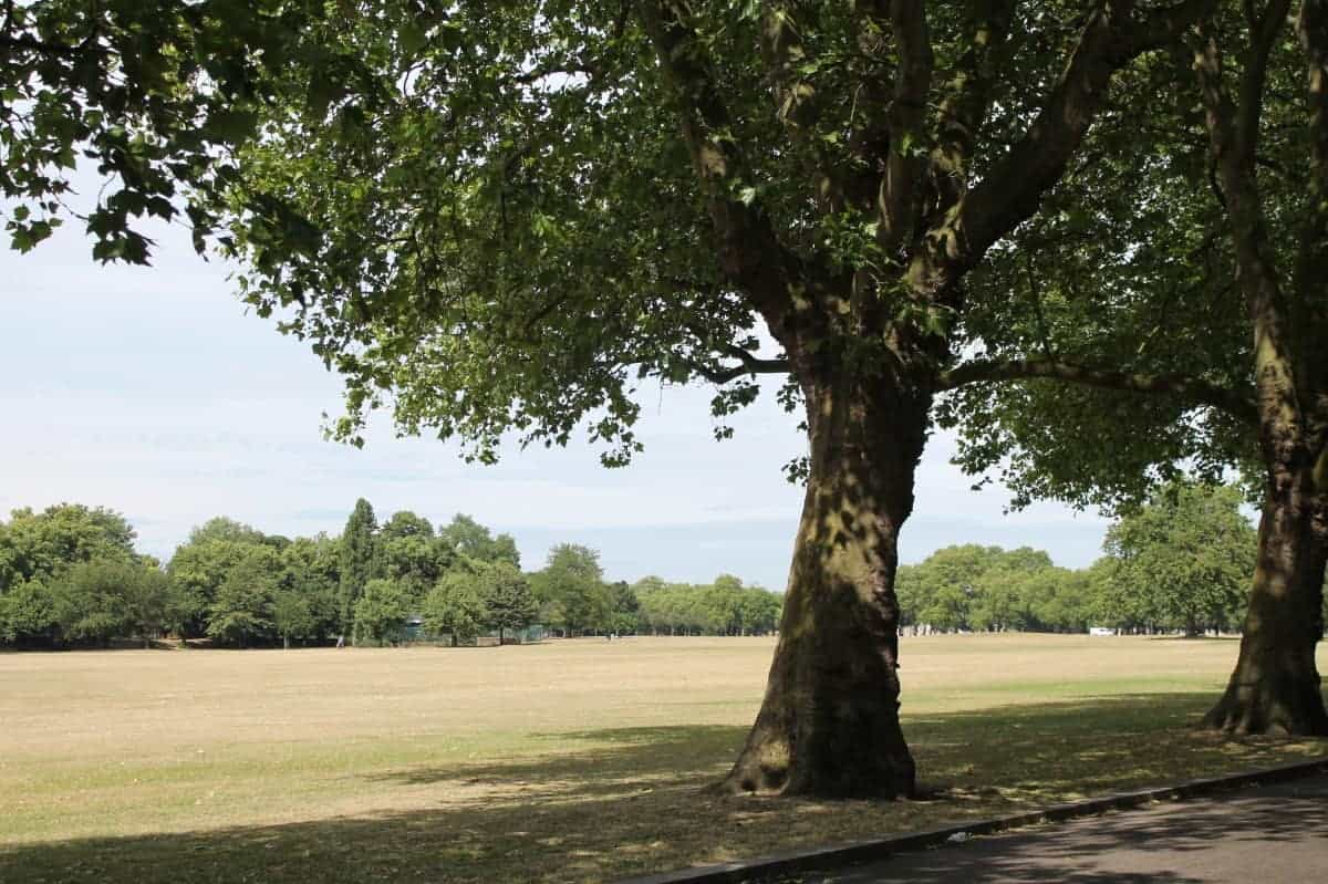 Review: Victoria Park - London