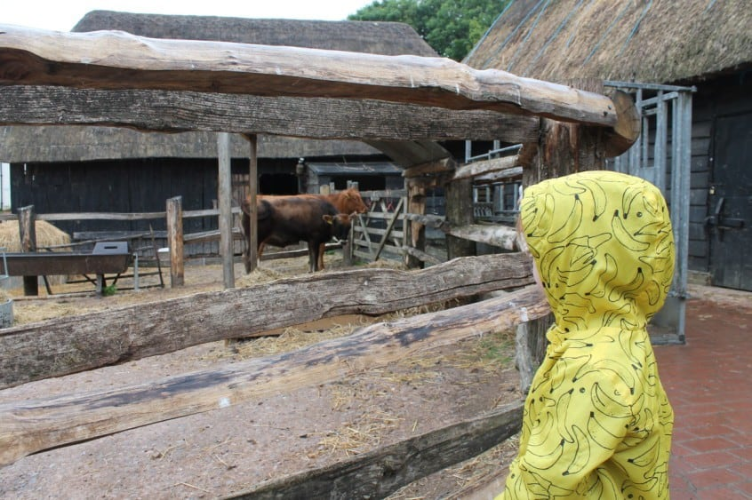 Review: Manor Farm and Country Park