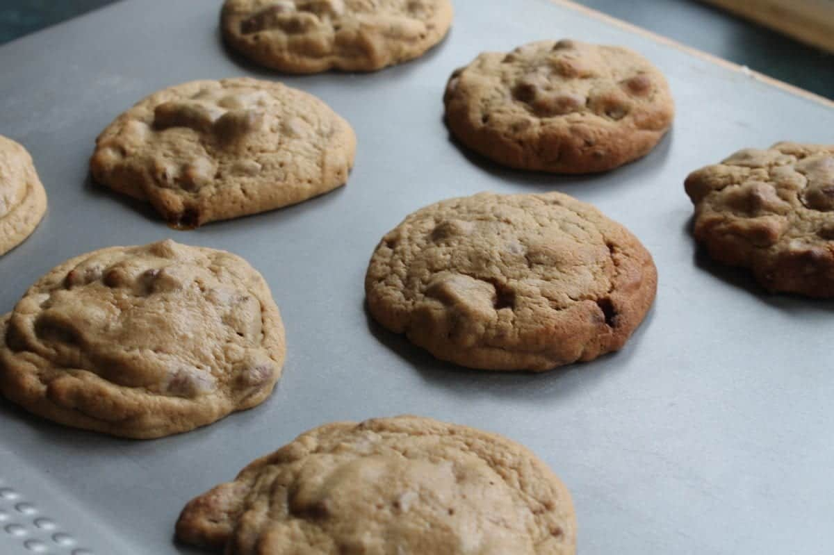 Creating Cookies with Choc Nibbles