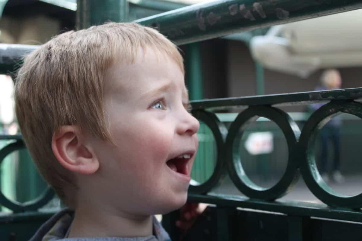 Review: Drayton Manor Theme Park