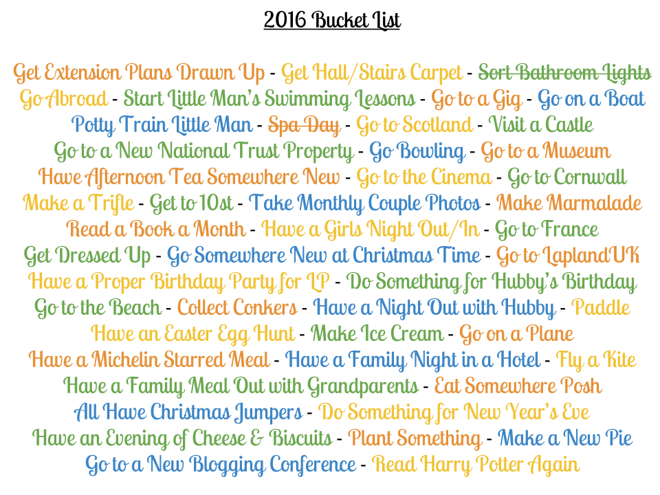 Our 2016 Bucket List Update {January}
