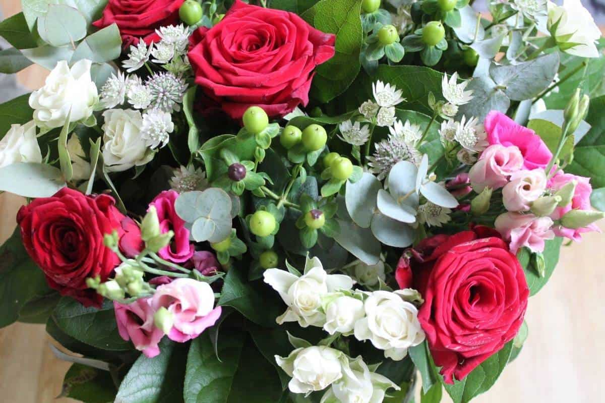 Celebrating the Queen's Birthday with a Serenata Flowers Giveaway! (Competition now closed)