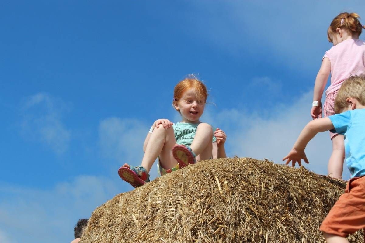 A Sunny Day at Manydown Farm