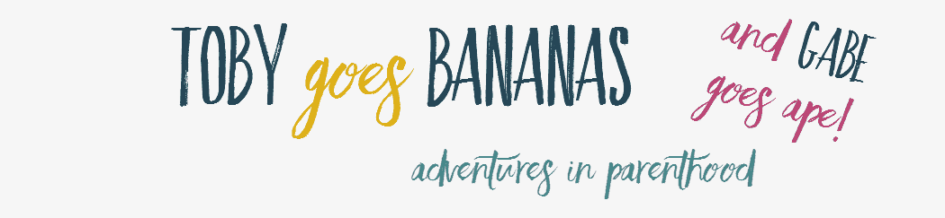 Blogger Behind the Blog {Toby Goes Bananas)