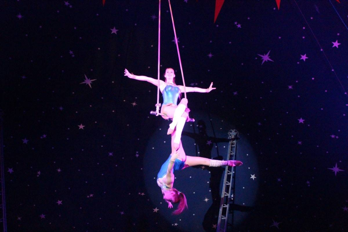 Review: Christmas Circus at Squire's Garden Centre, Badshot Lea
