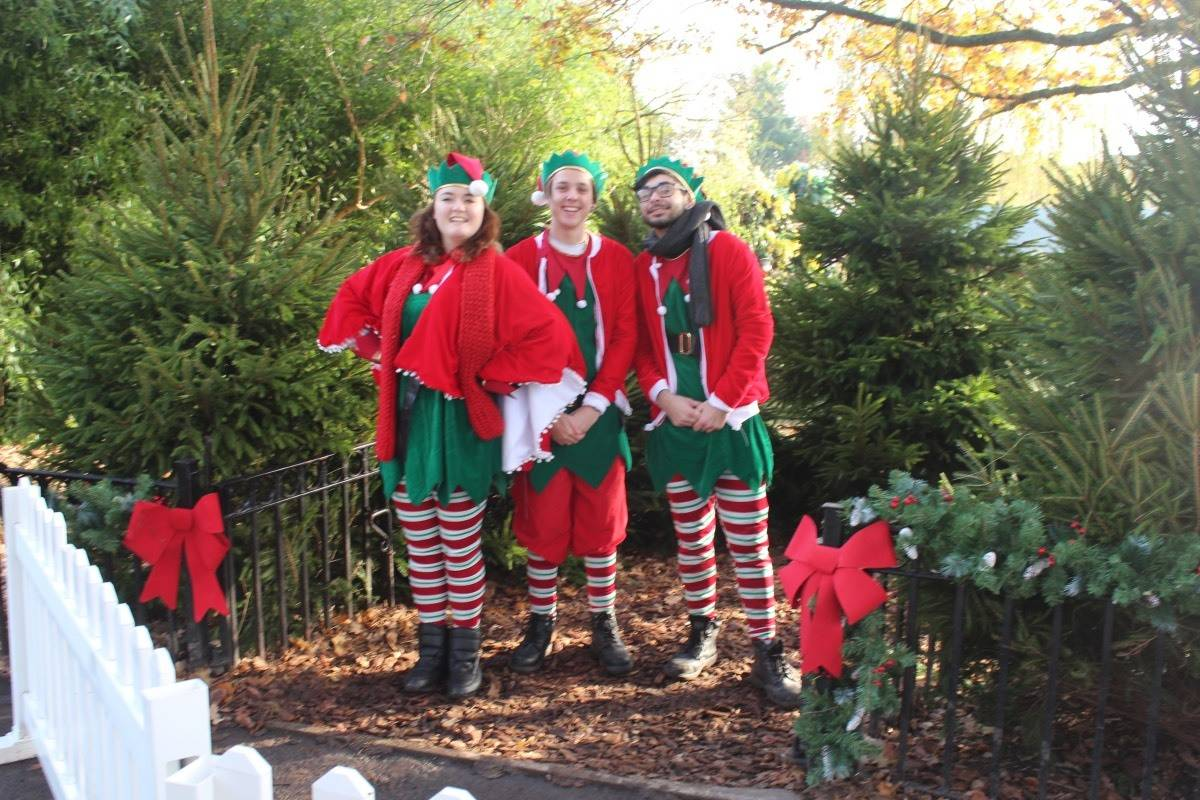 A Winter's Tale at Chessington World of Adventures - elves