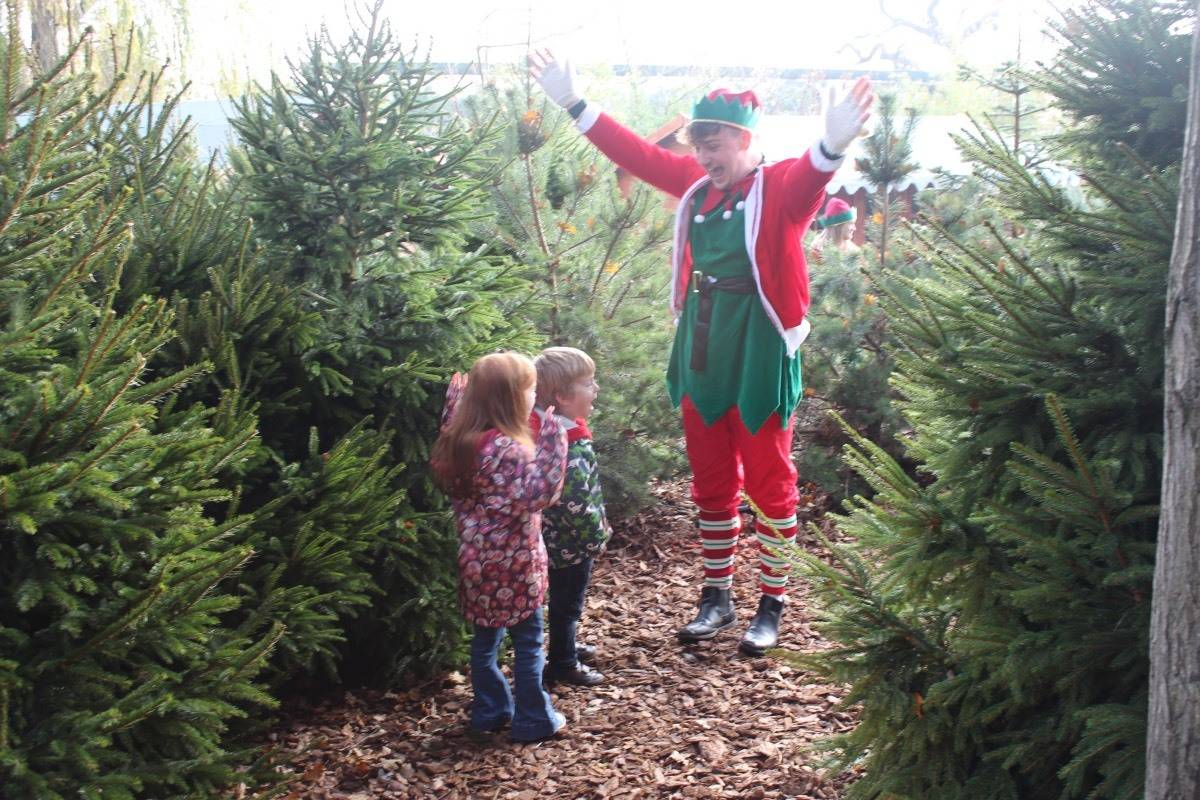 A Winter's Tale at Chessington World of Adventures - more elves
