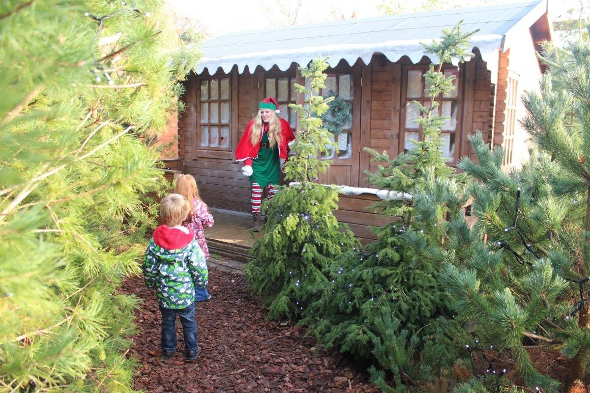 A Winter's Tale at Chessington World of Adventures - Santa's cabin
