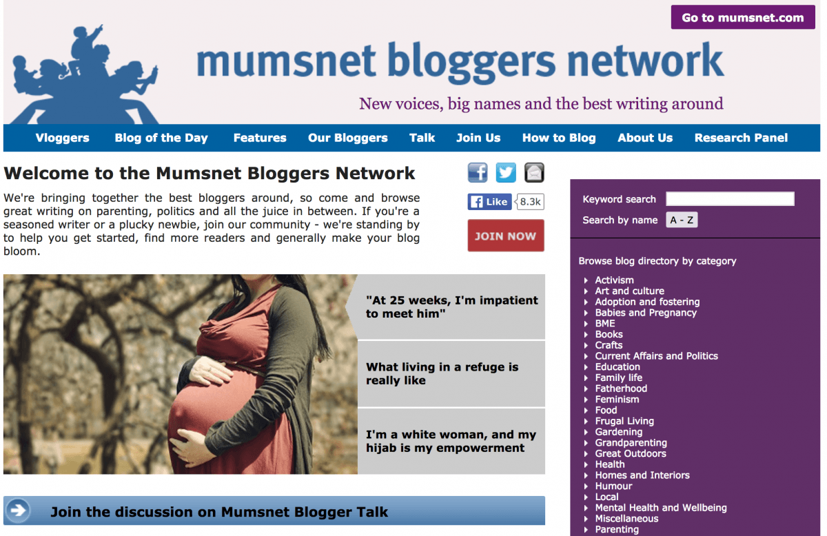 What are Blogger Networks?