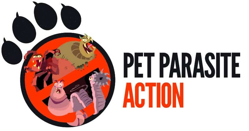 How much do you know about Pet Parasites?