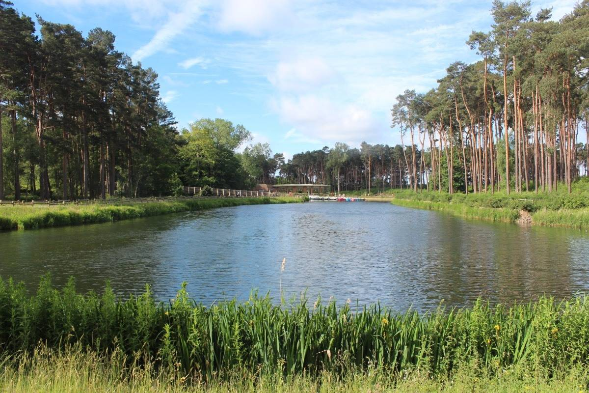 Lake at Center Parcs Woburn Forest