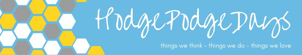 Blogger Behind the Blog {HodgePodgeDays}