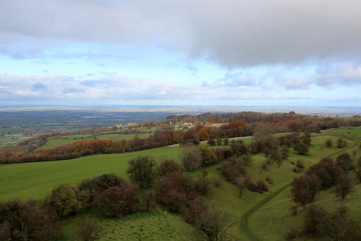 A Trip to Broadway Tower