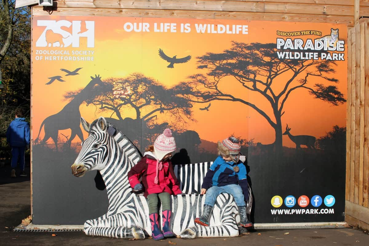 A trip to Paradise Wildlife Park and a Private WOW Tour