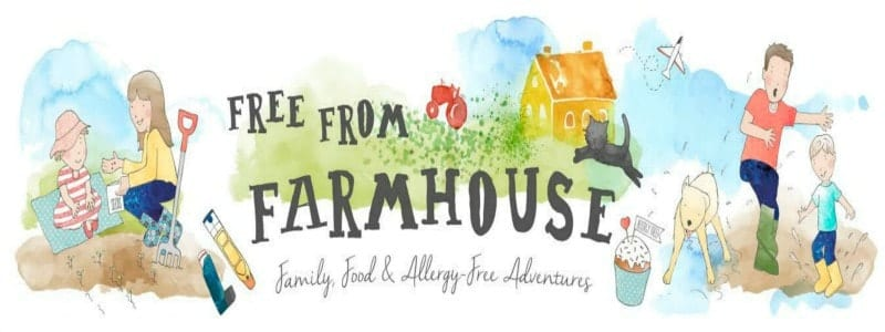 Blogger Behind the Blog {Free From Farmhouse}