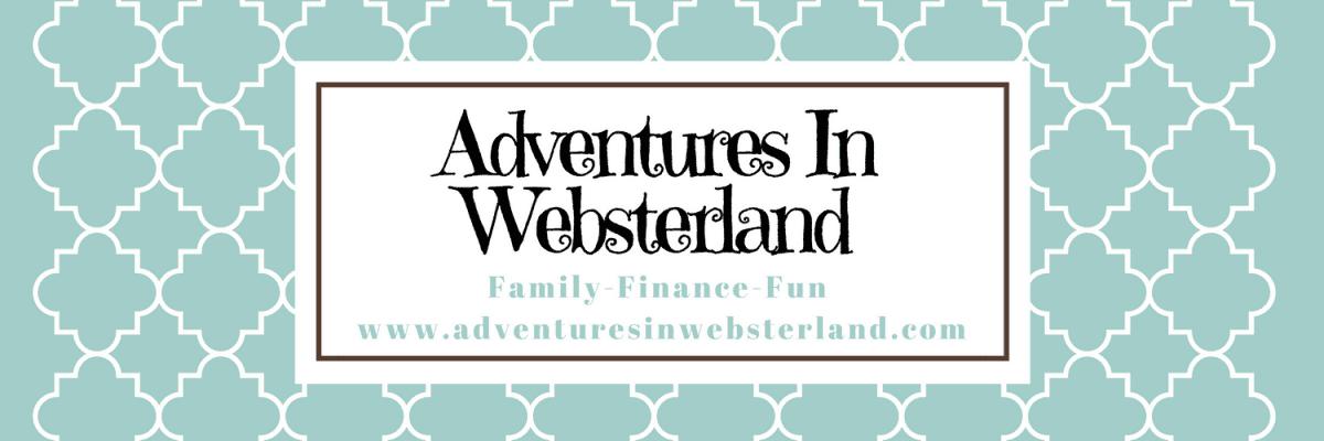 Blogger Behind the Blog {Adventures in Websterland}