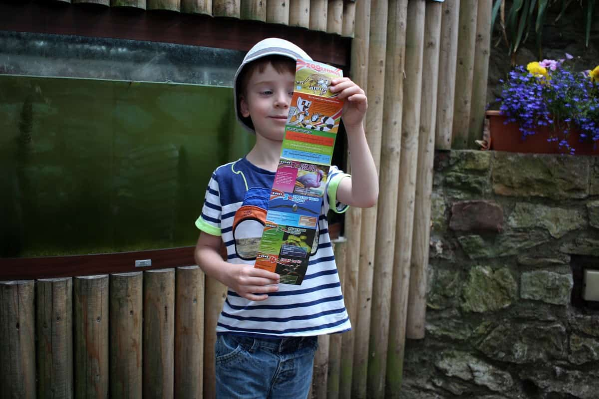 A Great Day at Bristol Zoo Gardens