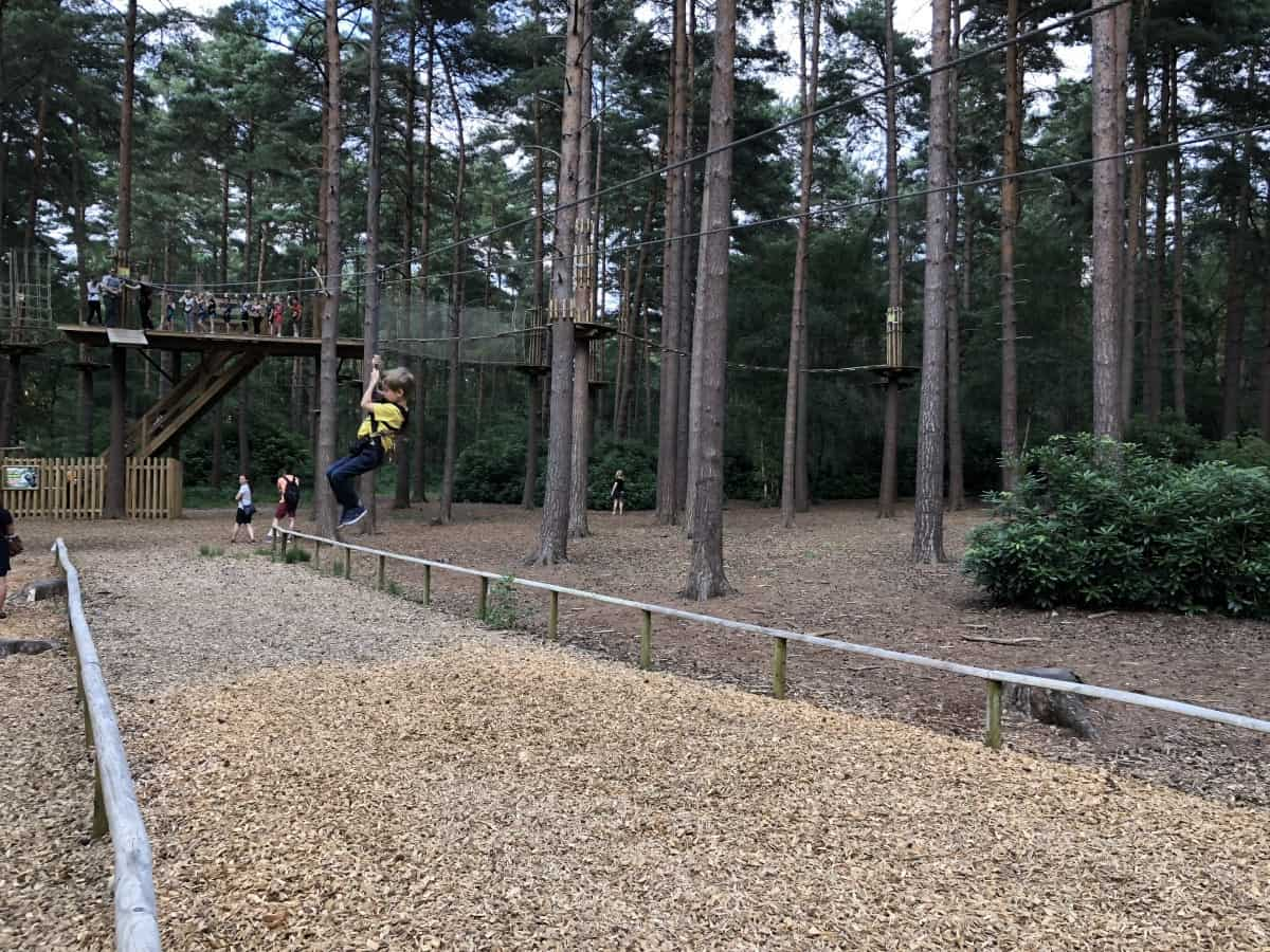GoApe Tree Top Junior Course - Bracknell