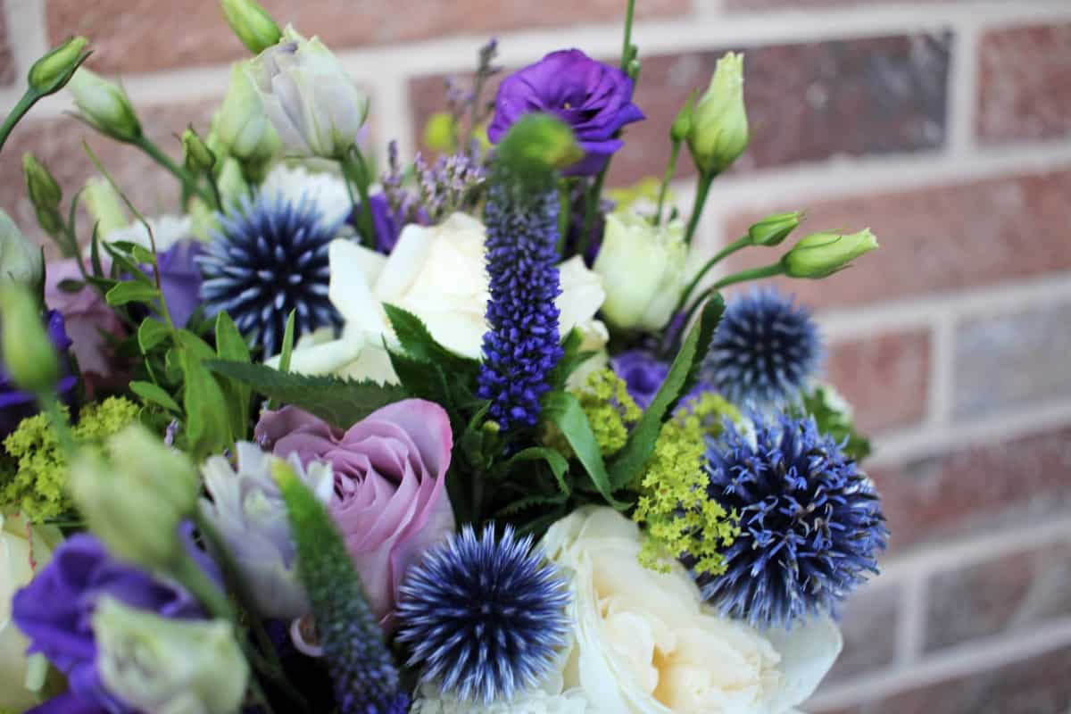 Win a Beautiful Bouquet of Flowers from Bloom Magic