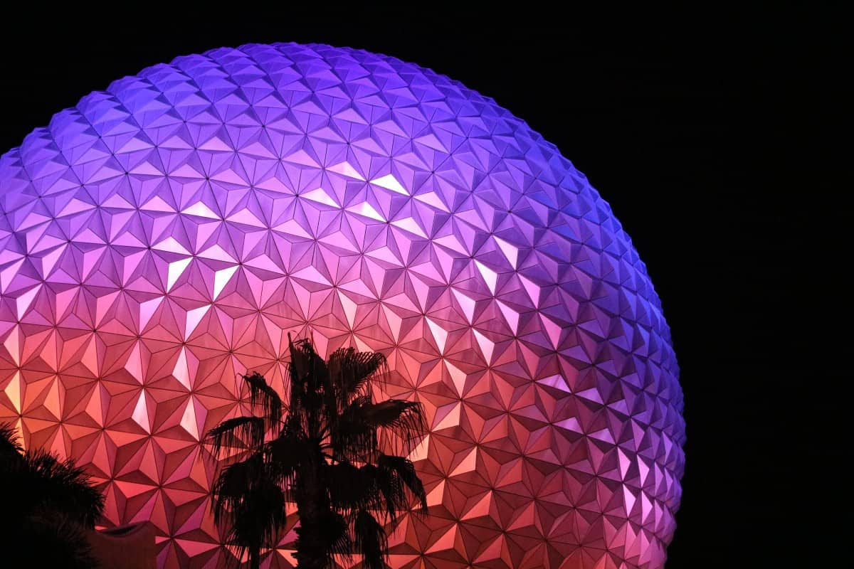 Our Epcot Experience