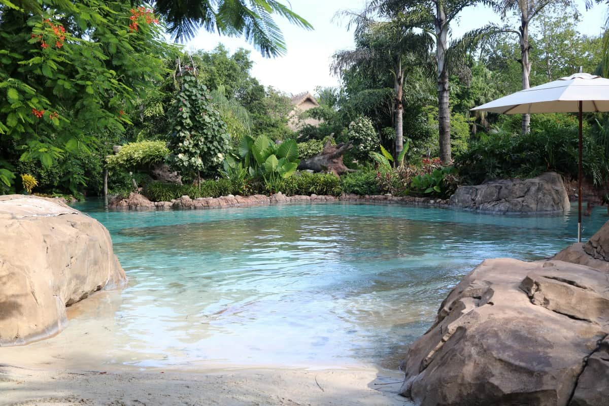 A Wonderful Day at Discovery Cove