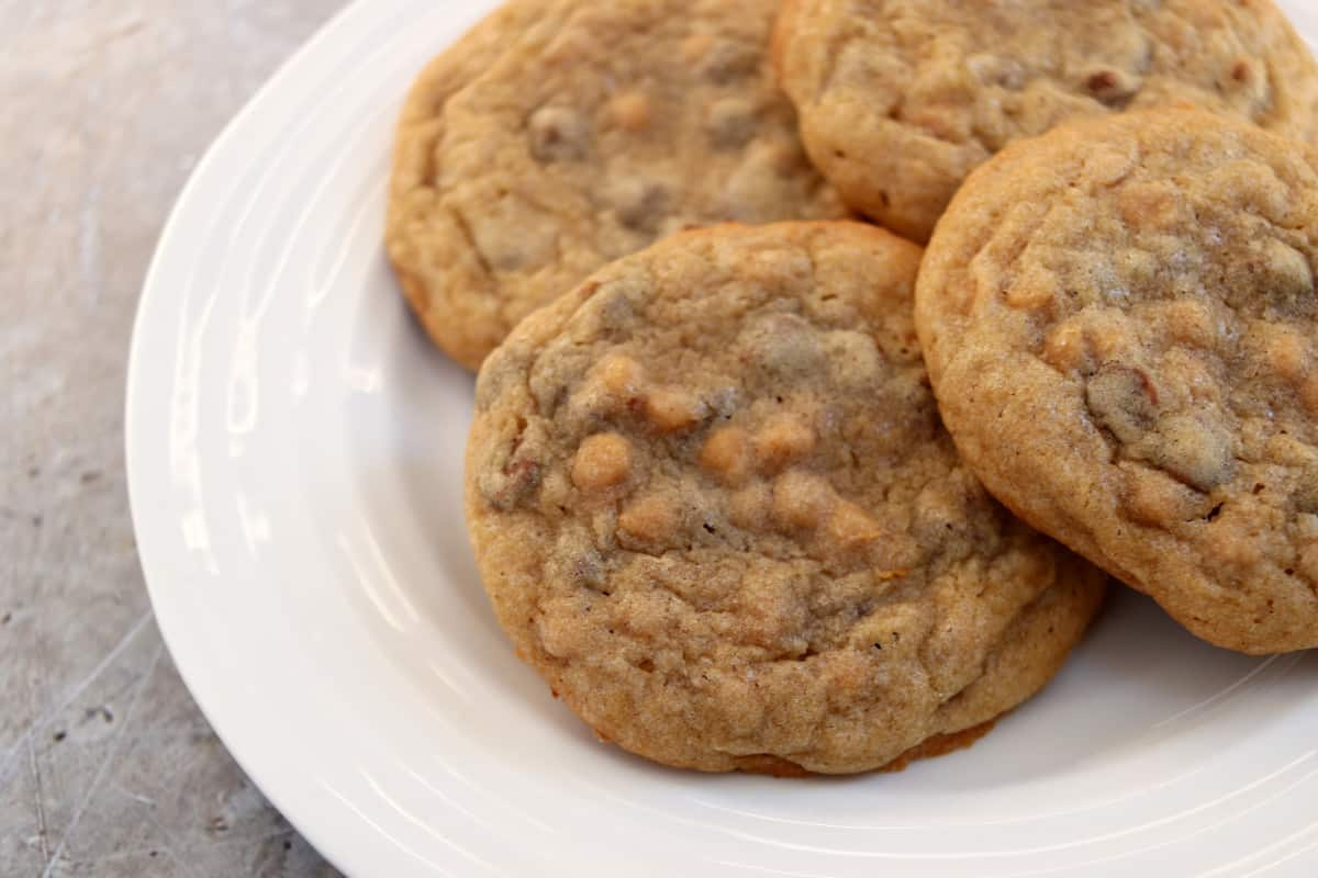 Peanut Butter and Chocolate Chip Cookies Recipe