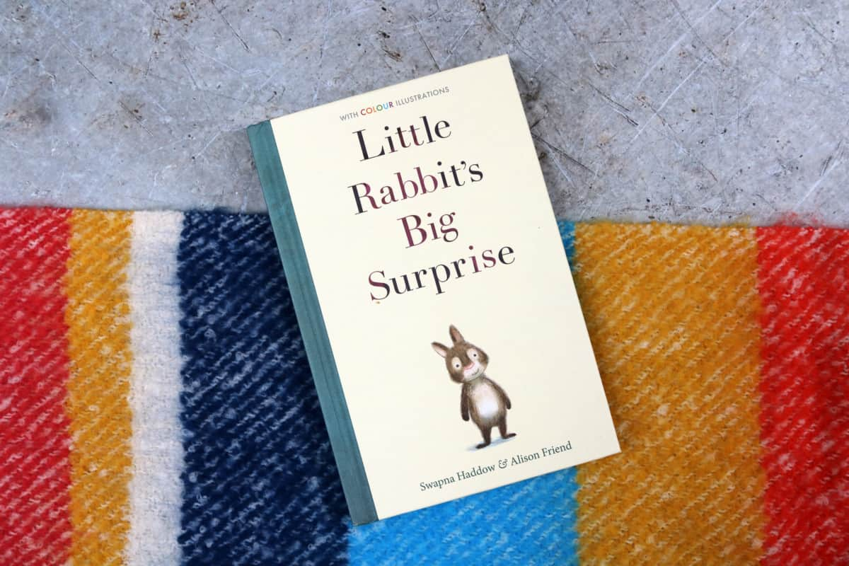 Little Rabbit's Big Surprise - Swapna Haddow