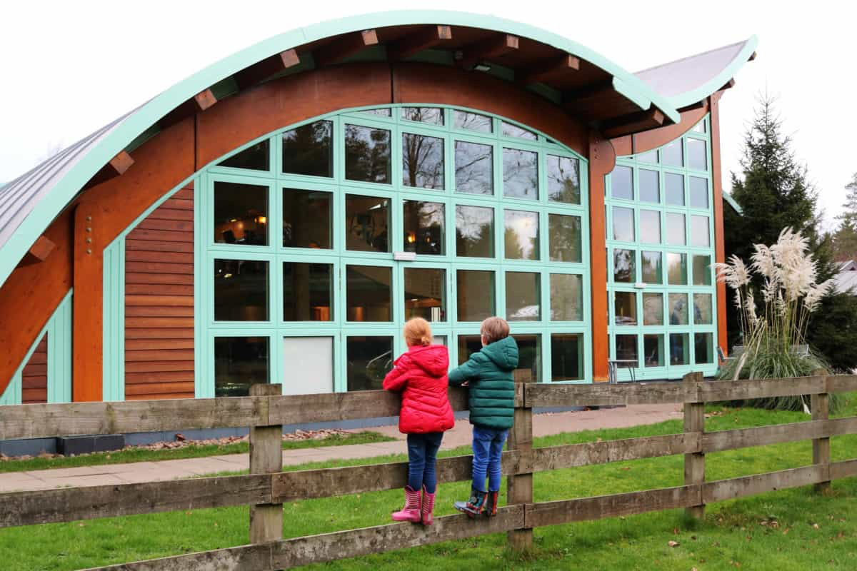A Family Weekend at Darwin Forest - Luxury Lodge Holidays