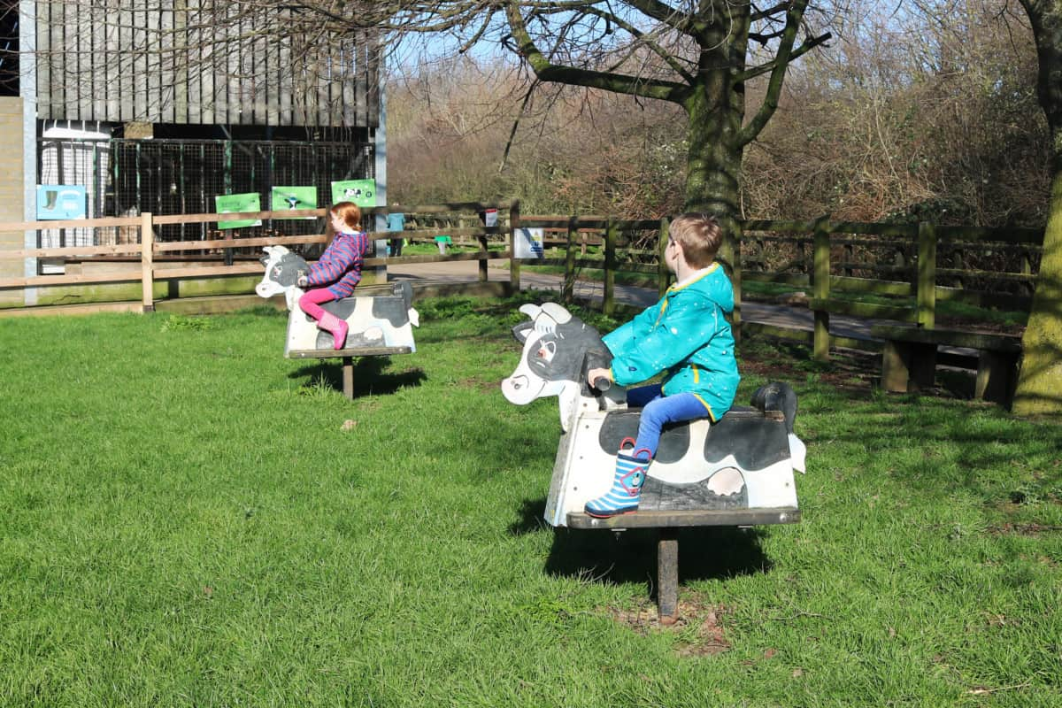 Lee Valley Park Farms, Essex - A Great Family Day Out