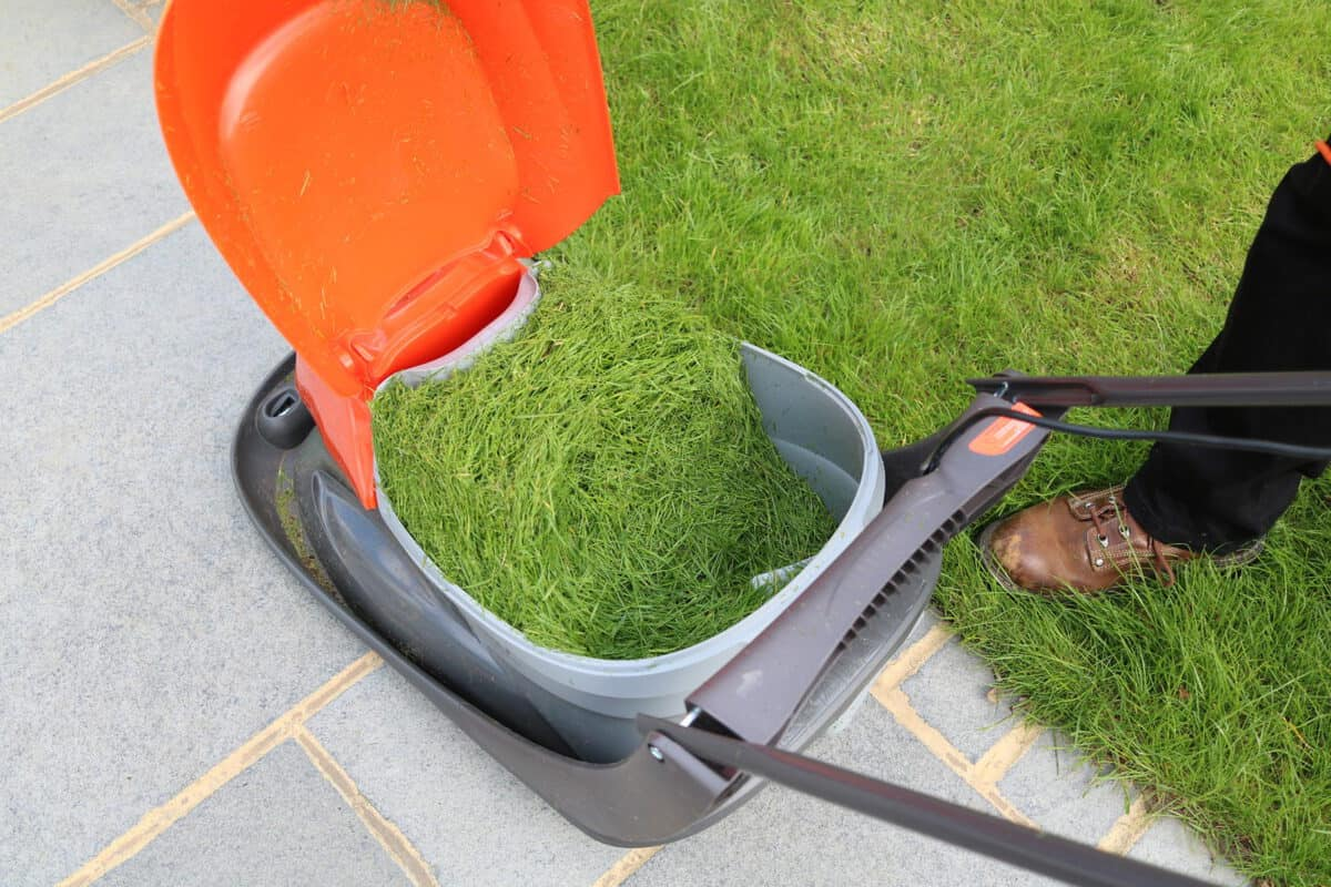 Making Light Work of the Lawn with Flymo #EasiLife | AD