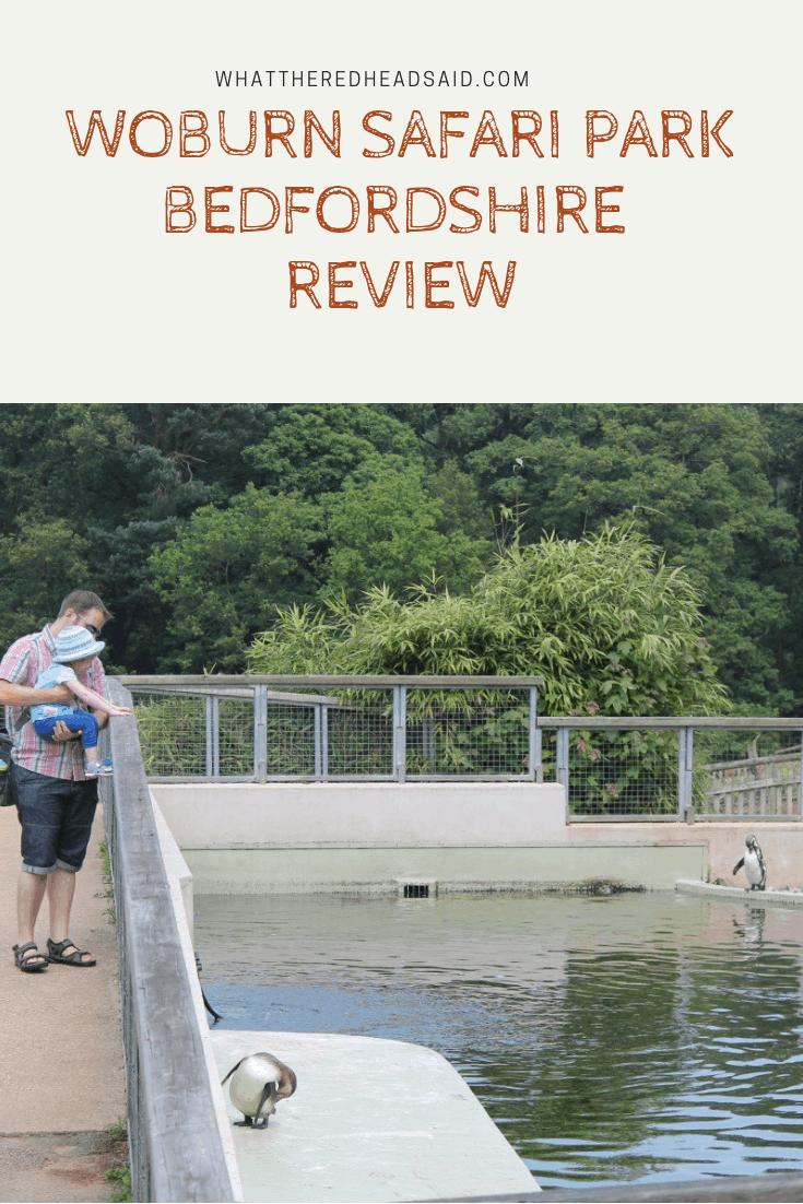 Woburn Safari Park Review
