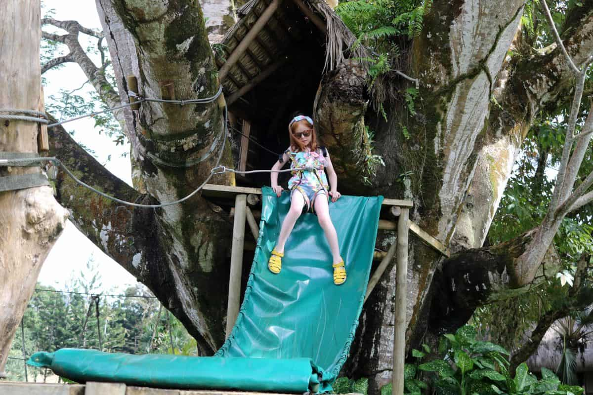 A Morning at TerrOcean Le Domaine de l'Etoile Mauritius - Tree Slide