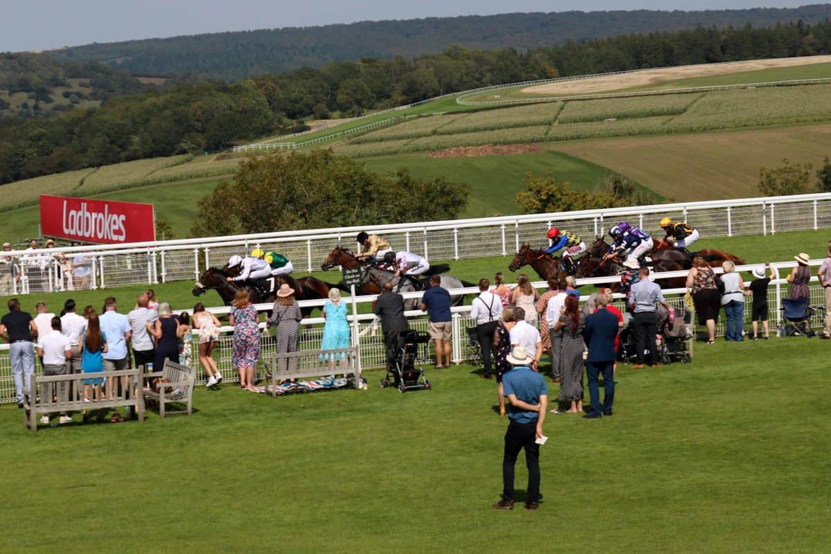 A Family Day at Goodwood Races   AD