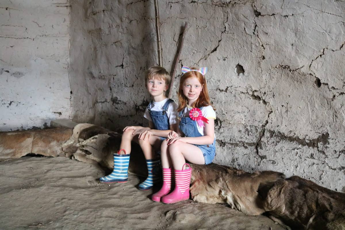 A Day Out at Butser Ancient Farm