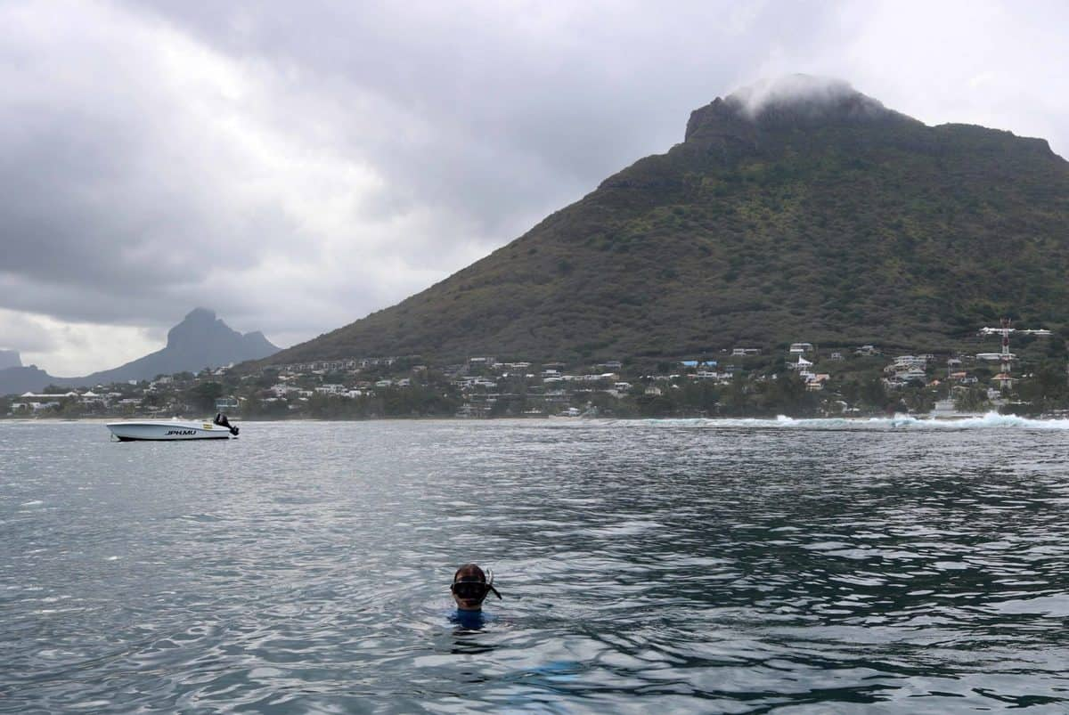 Seeing Dolphins in Mauritius with Adrien's Dream