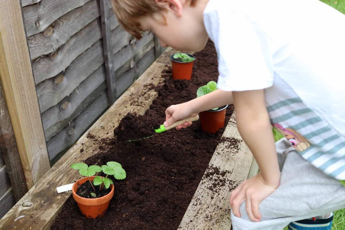 Ten Fun Things To Do After School - gardening