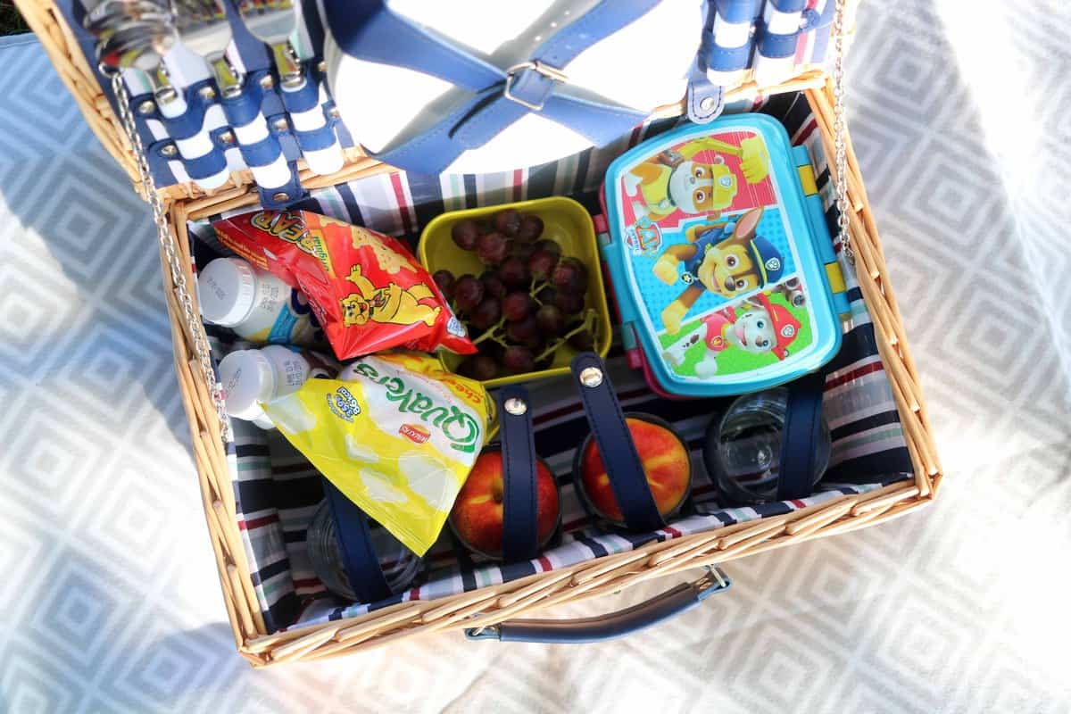Ten Fun Things To Do After School - picnic hamper