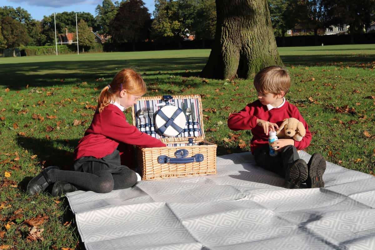 Ten Fun Things To Do After School - picnic