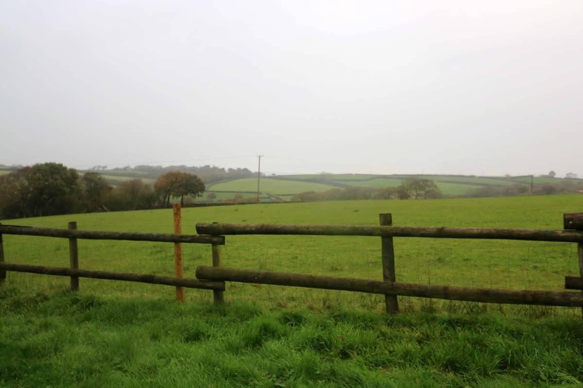 Half Term Glamping at Hedley Wood - North Devon
