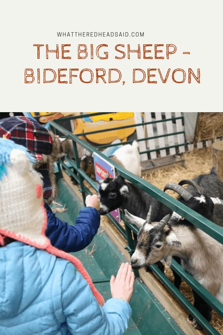 The Big Sheep - Bideford, Devon