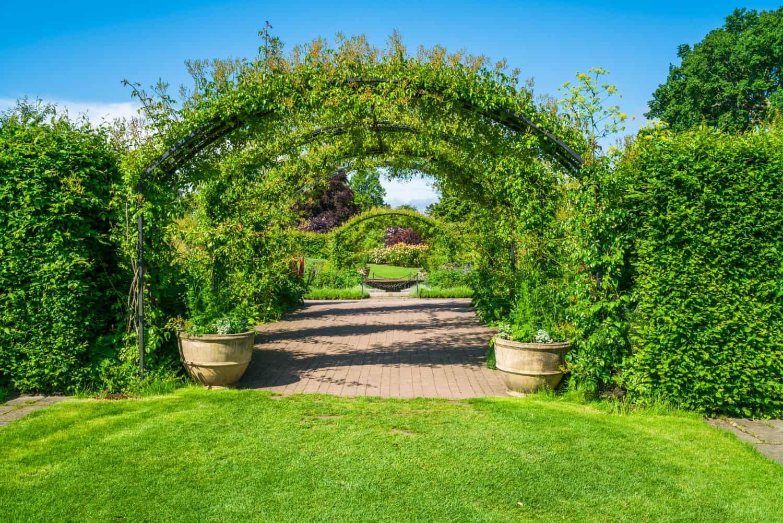 RHS Garden Wisley - Woking