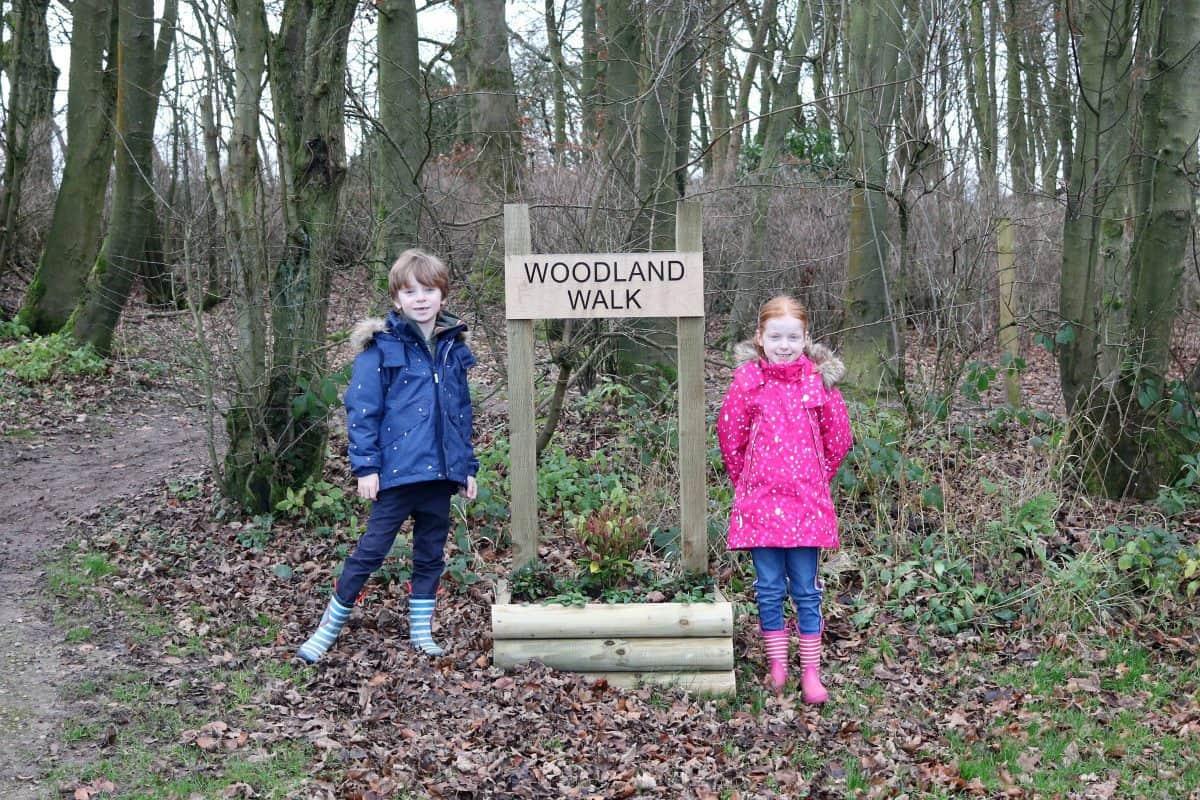 Landal Sandybrook Woodland Walk